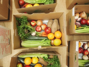 Good Food Box Pick-up @ Fernwood Community Centre | Victoria | British Columbia | Canada