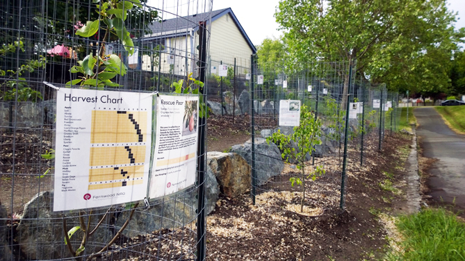 Fernwood Community Orchard