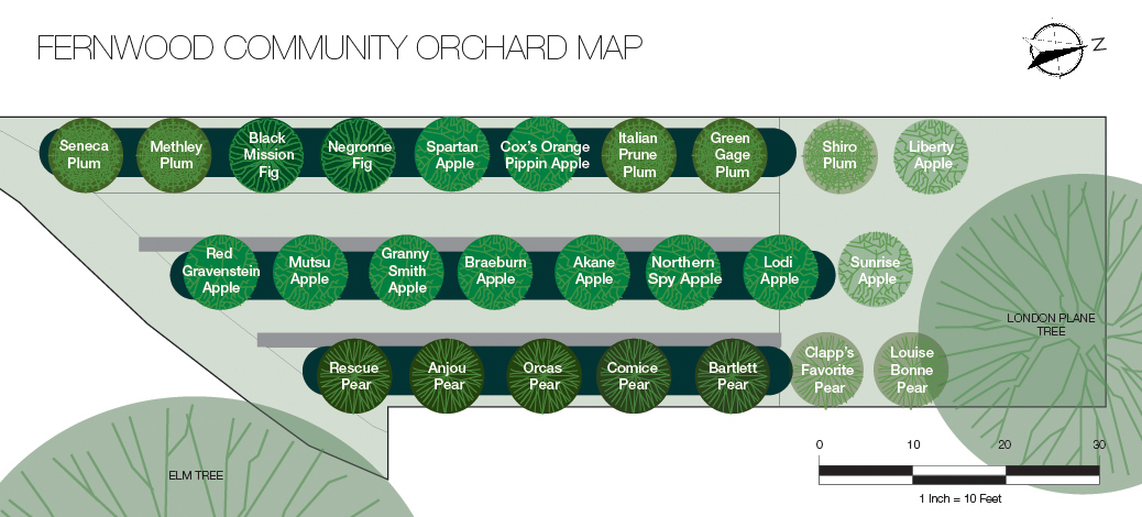 Fernwood Community Orchard Map