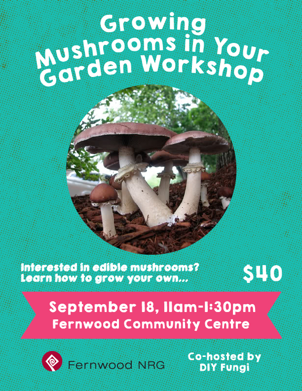 MushroomWorkshop_FernwoodNRG_2016-01