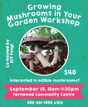Mushrooms-Workshop-2016