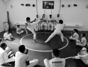 mandinga-capoeira