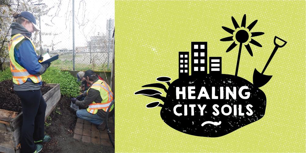 Healing_City_Soils_Fernwood_NRG_Victoria_1000px