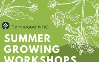 Summer Growing Workshops