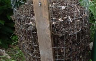 Leaf Cage. Photo: Alysha Punnett