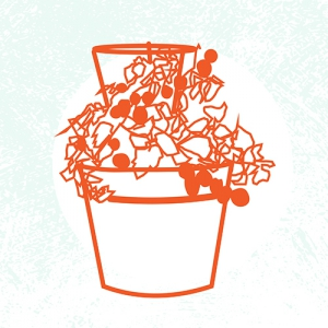 Container-Gardening-2018-SQ