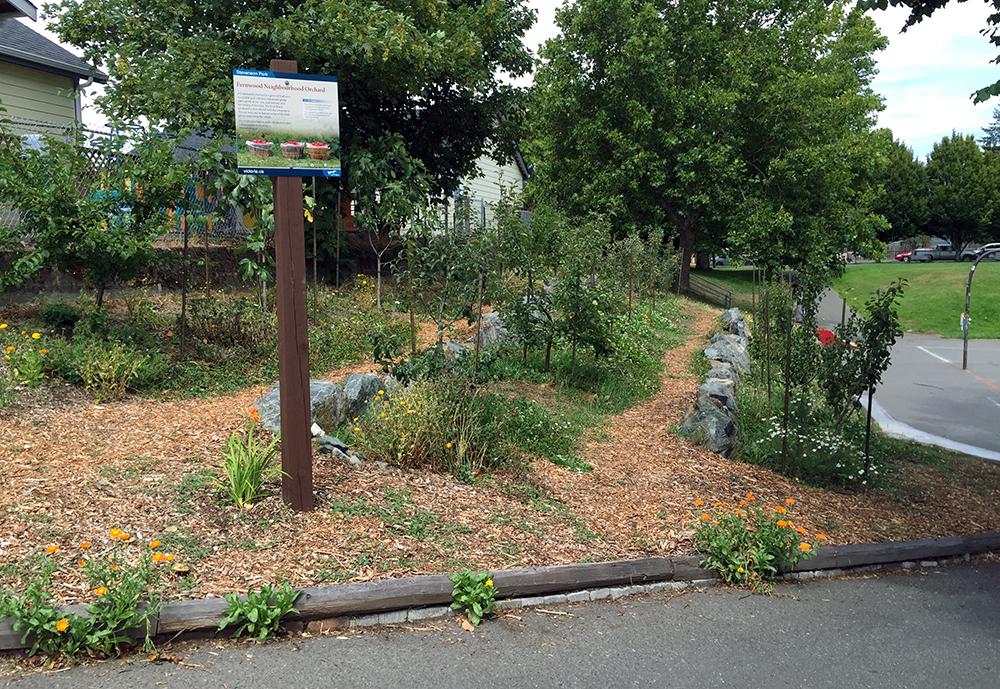 Fernwood-Neighbourhood-Orchard-Fernwood-NRG-1000px