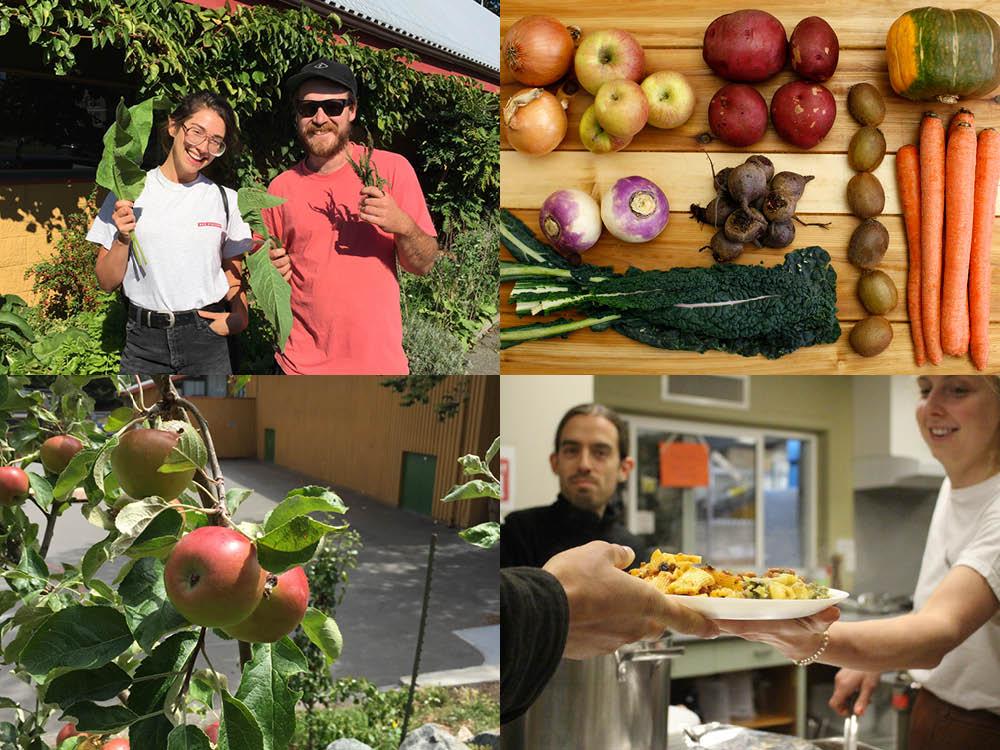 Food-Security-Fernwood-NRG-V