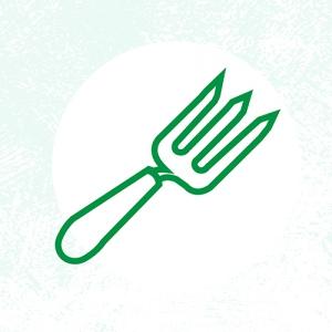 Planning-your-veggie-garden-2018