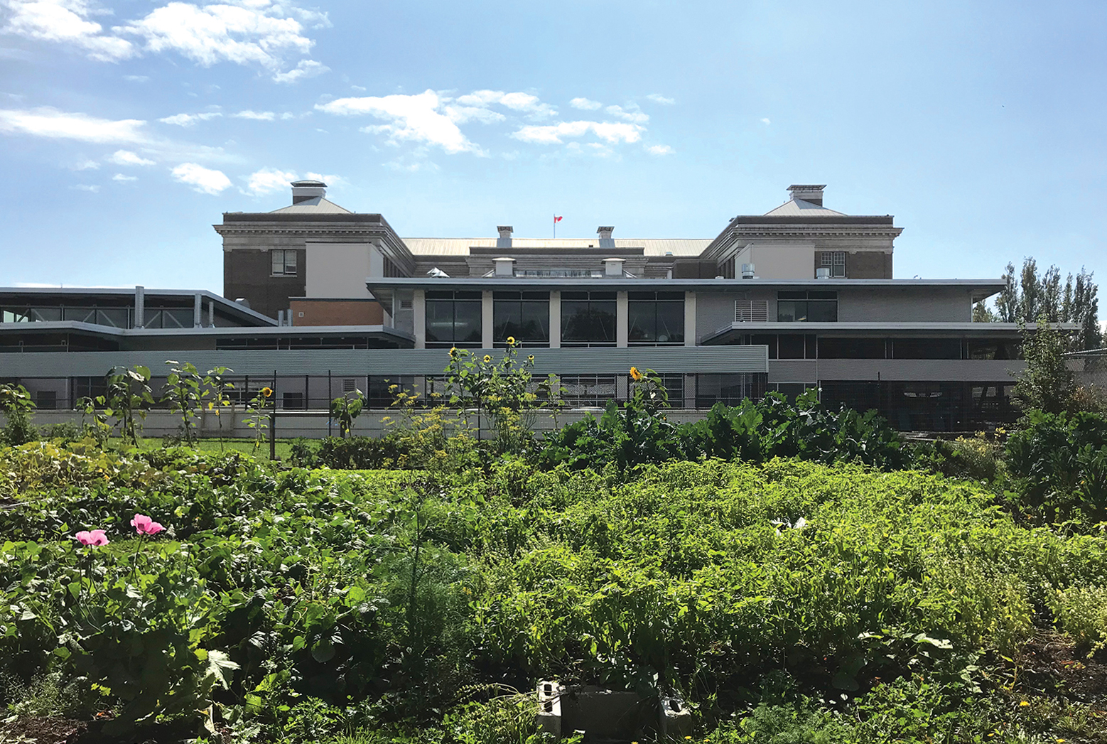 Vic High Learning Farm