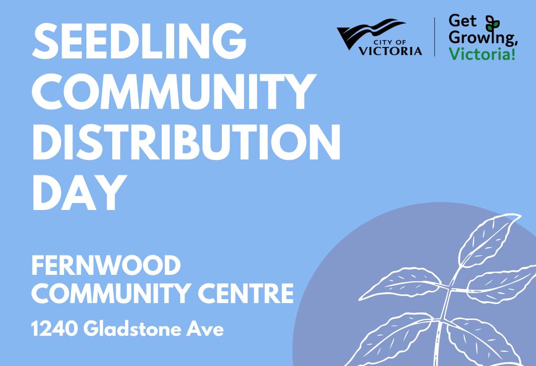 Seedling Distribution Day