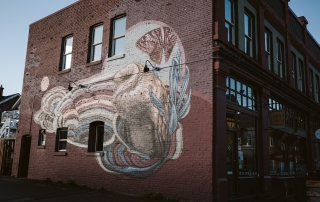 Collin Elder mural on Cornerstone Building. Photo - Aly Sibley