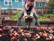 Kayla Amend your soil