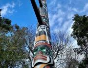 Story Pole Photo by Shae Zamardi
