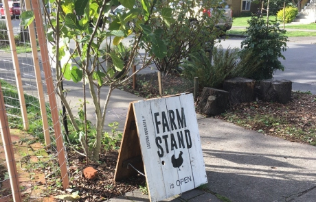 Farm Stand Photo by Marianne Unger