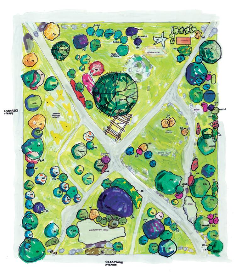 Springridge Common Map
