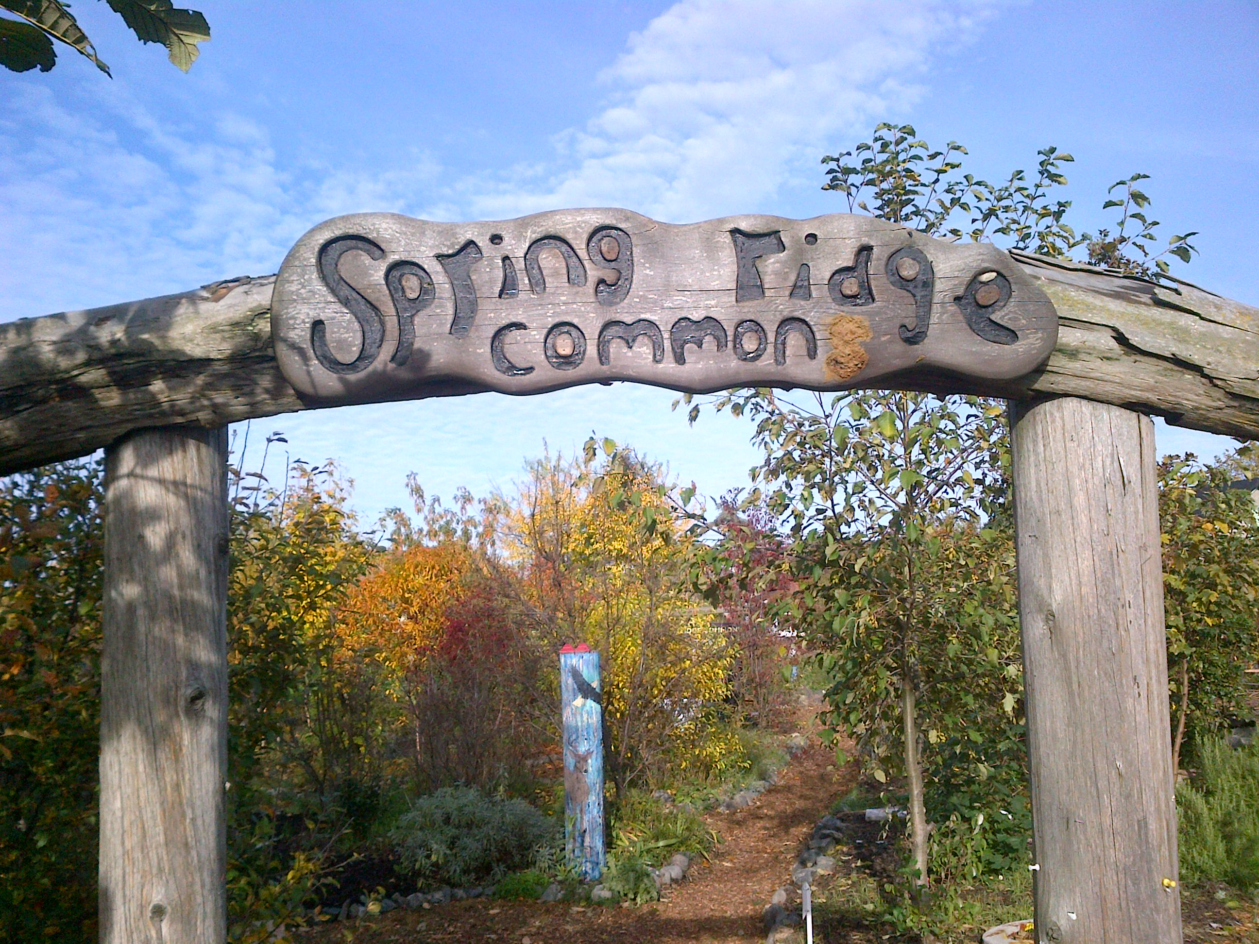 Spring Ridge Commons